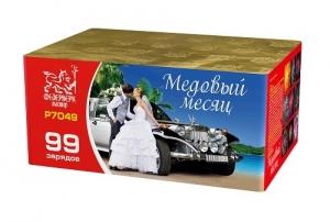 """Р7049 Медовый месяц (1,1""""х99) 1/2/1"""